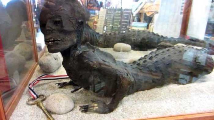 Meet Mr  Jake, Half-Alligator & Half-Human Found In Florida Swamp